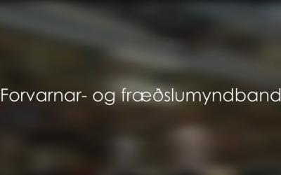 Hvað hafa fimleikar gert fyrir þig?